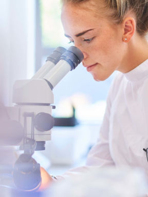 a pharmacy student uses a microscope in a pharmaceutical lab